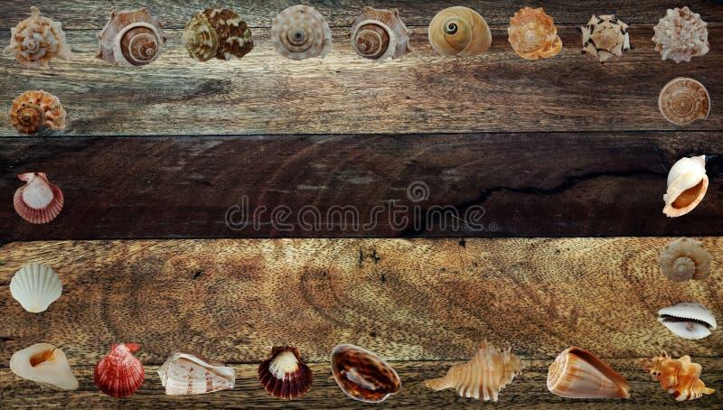L'été écosse le fond en bois brun de bannière image stock