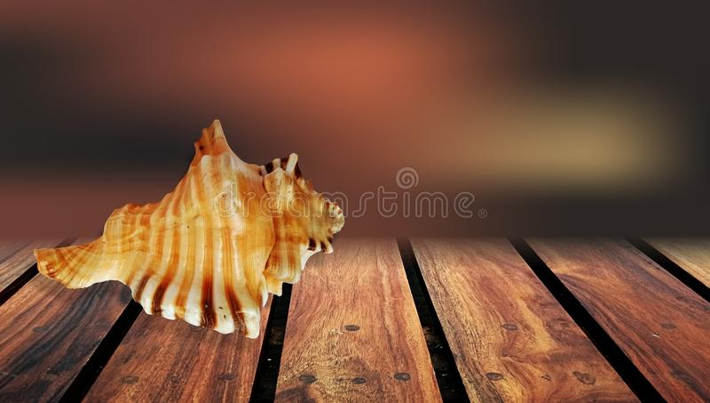 L'été écosse le fond en bois brun de table photographie stock libre de droits