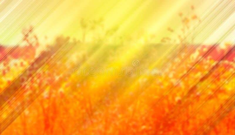 L'été a brouillé le fond avec des rayons du soleil de la soirée photographie stock