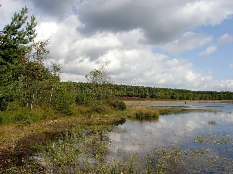 L'étang dans le pré, couleurs d'automne. photographie stock libre de droits