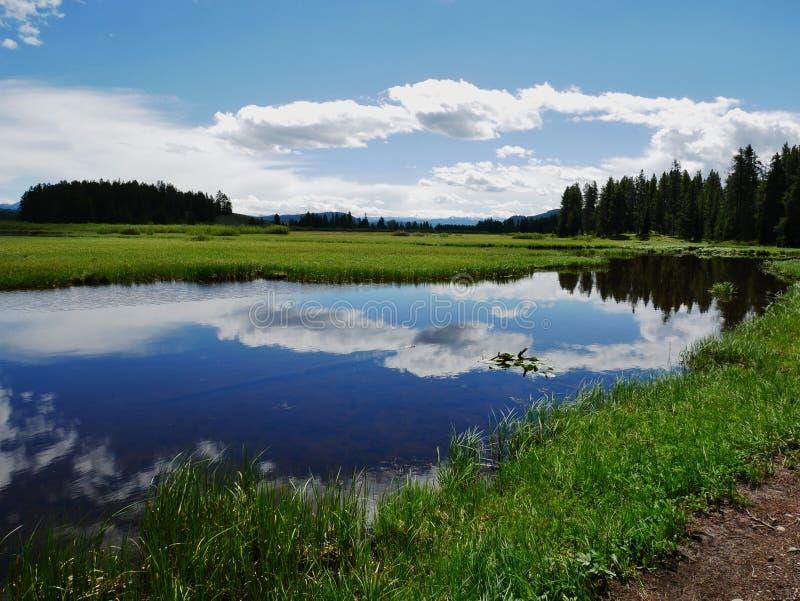 L'étang de héron et le lac swan augmentent en parc national grand de Teton, Wyoming photo stock