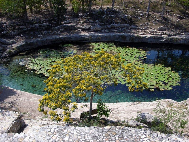 L'étang sacré photographie stock