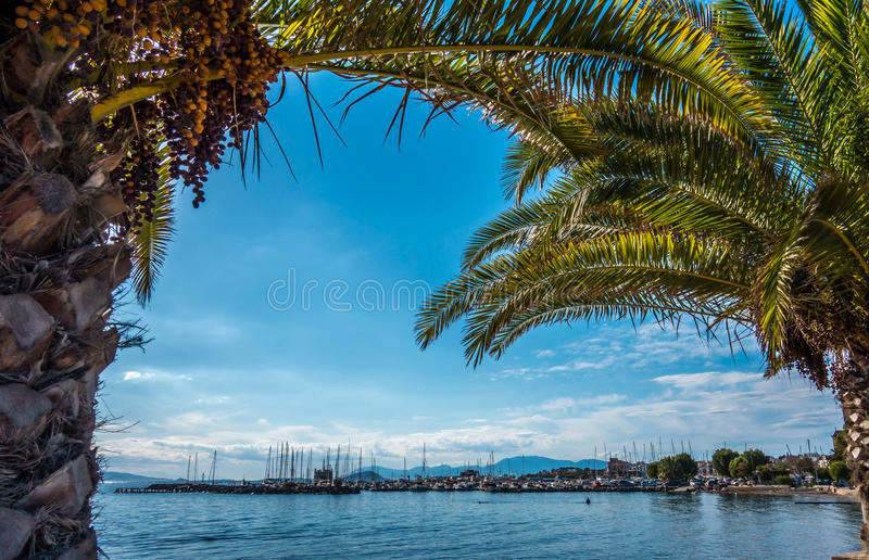 L'île d'Aegina, Athènes, Grèce photos libres de droits