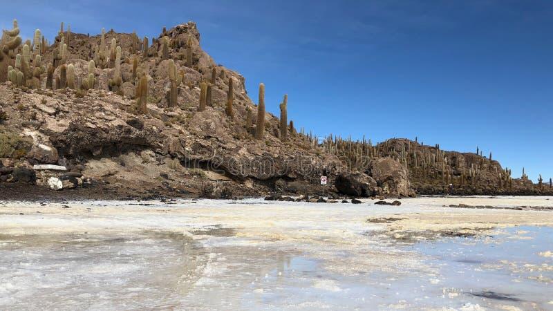L'île d'Incahuasi est un affleurement accidenté et rocheux de terre avec beaucoup de cactus géants, situé au milieu de Salar de U photographie stock libre de droits