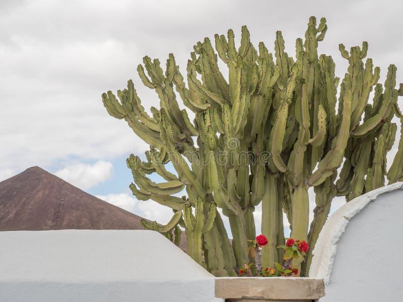 L'île de Lanzarote photo stock