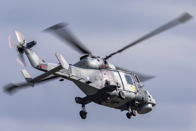 L'aéronavale royale de marine AgustaWestland HMA sauvage Anti hélicoptère submersible ZZ381 de la guerre 2 AW-159 images libres de droits