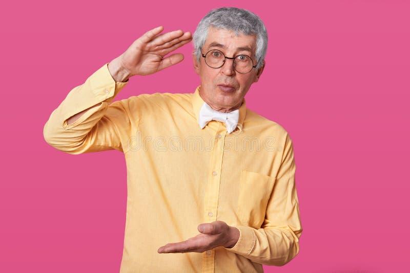 L'aîné calme montre le grand ou grand objet, positions contre le mur rose, habillé dans la chemise jaune élégante et le bowltie b image libre de droits