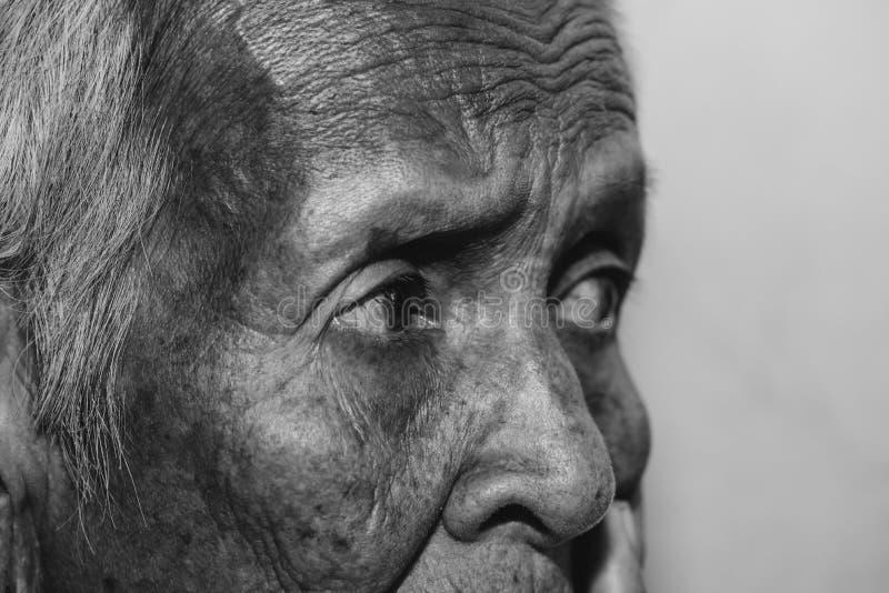 L'abattage du ` s de dame âgée isolé , elle femme supérieure du ` s dans la famille et les personnes âgées image libre de droits