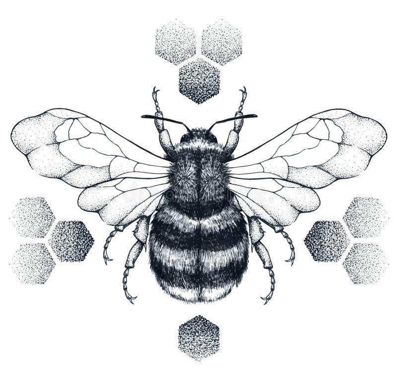 L'abeille barrée de miel se repose sur des nids d'abeilles tatouage Illustartion de T-shirt illustration de vecteur