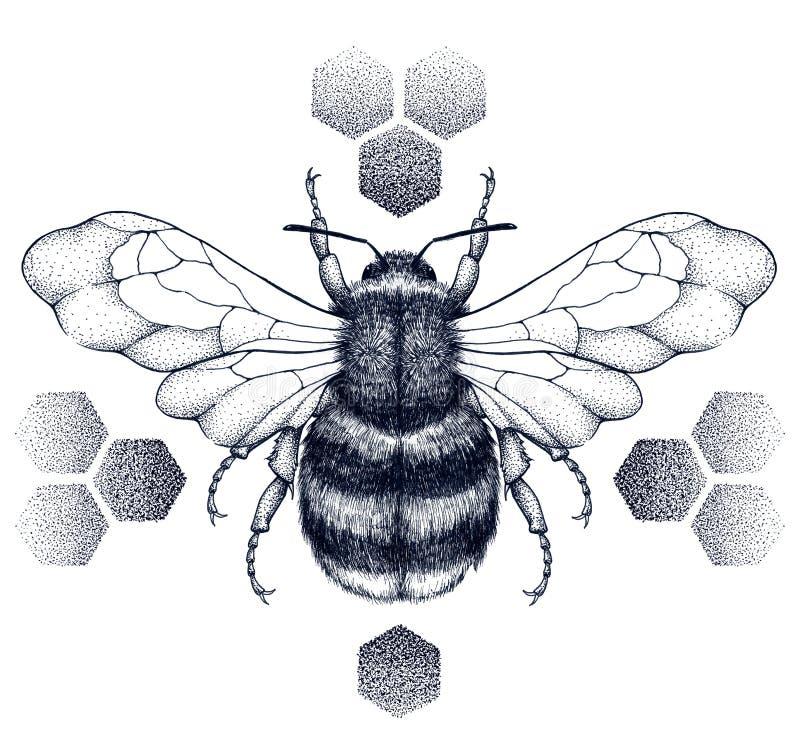 L'abeille barrée de miel se repose sur des nids d'abeilles tatouage Illustartion de T-shirt illustration libre de droits