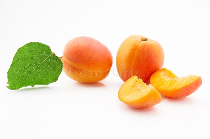 L'abricot mûr, juteux et appétissant porte des fruits avec les feuilles vertes photos libres de droits
