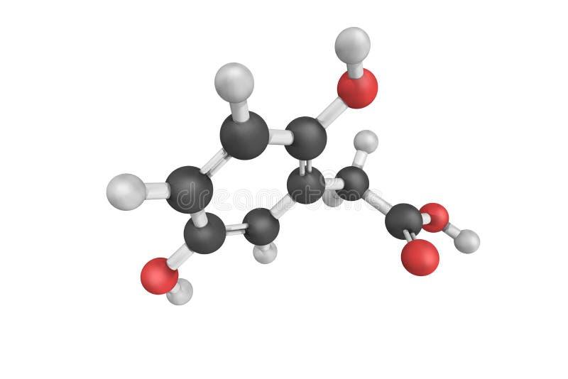 L'acido Homogentisic è un acido fenolico trovato in arbutus unedo (streptococco fotografia stock