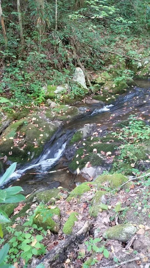 L'acqua corrente gocciola vicino fotografie stock libere da diritti
