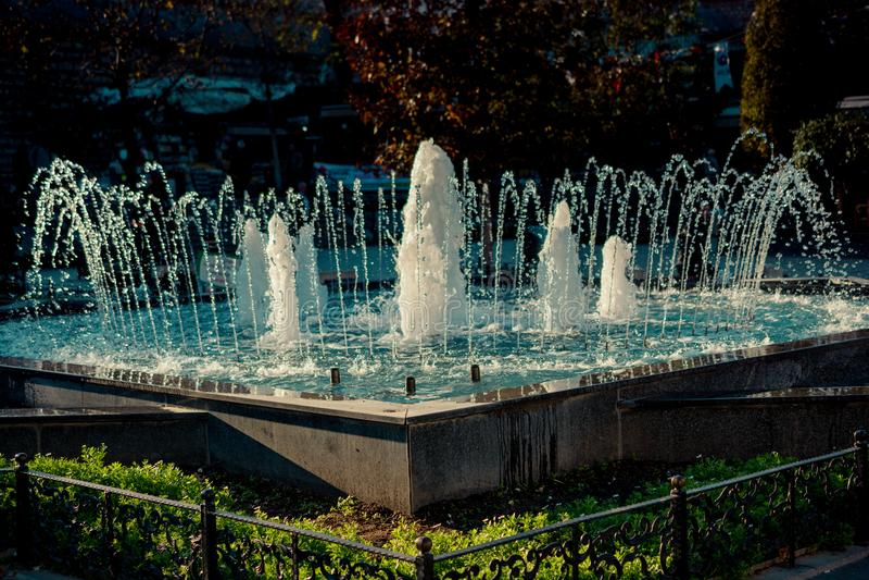 L'acqua frizzante di zampillo delle fontane in uno stagno immagini stock