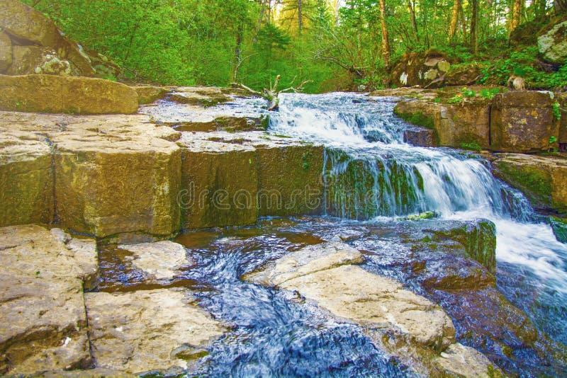 L'acqua si imbatte nel legno, piccole rapide di grandi cascate, Taiga Giorno pieno di sole fotografia stock