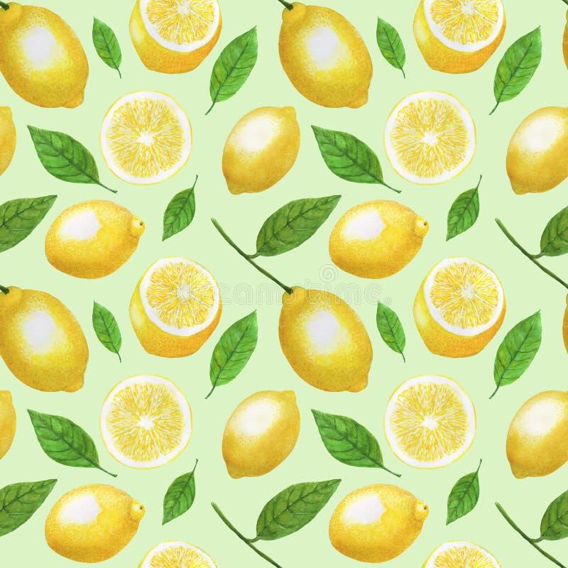 L'acquerello dei limoni fruttifica insieme senza cuciture di carta dell'illustrazione di Digital del modello dell'agrume del desi illustrazione vettoriale