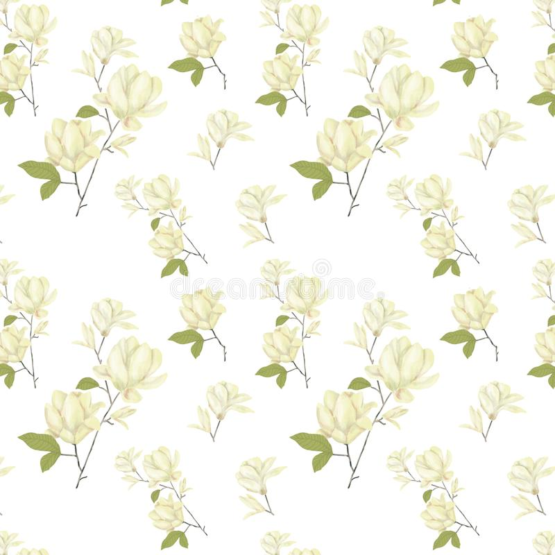 L'acquerello digitale di clipart del modello seamlless della magnolia fiorisce l'illustrazione dei fiori dell'illustrazione del f illustrazione vettoriale