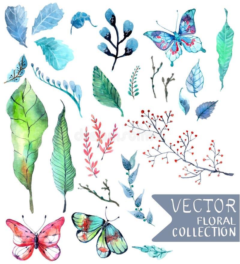 L'acquerello fiorisce la raccolta per progettazione differente illustrazione vettoriale