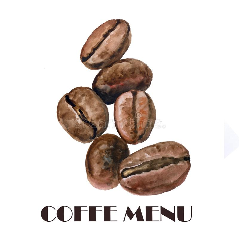 L'acquerello ha arrostito i chicchi di caffè accurati ed il disegno dettagliato Progettazione realistica disegnata a mano Copertu illustrazione vettoriale