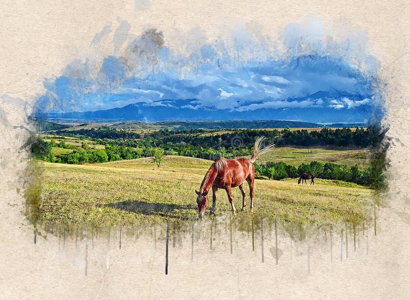 L'acquerello ha dipinto il bello cavallo marrone illustrazione di stock