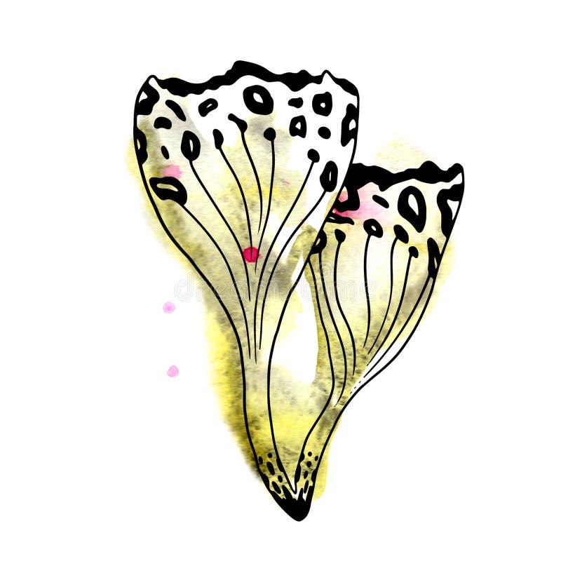 L'acquerello magico della foresta del fungo elegante insolito dell'estratto macchia e spruzza la linea nera siluetta di arte illustrazione di stock