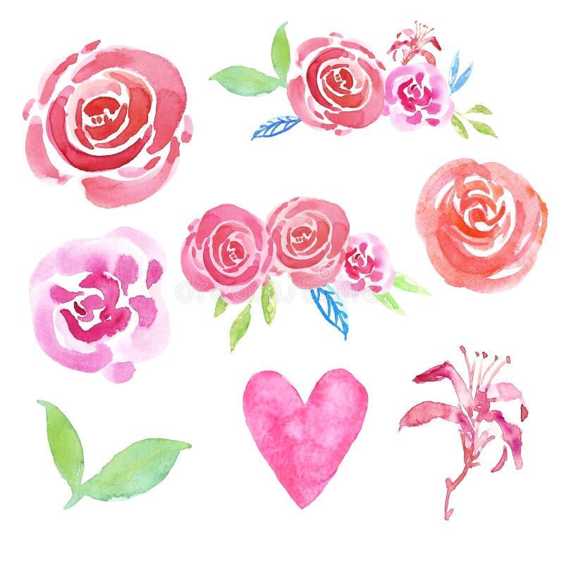 L'acquerello messo con dipinto a mano arrossisce rose rosa, cuore e composizioni floreali, isolati su fondo bianco illustrazione vettoriale