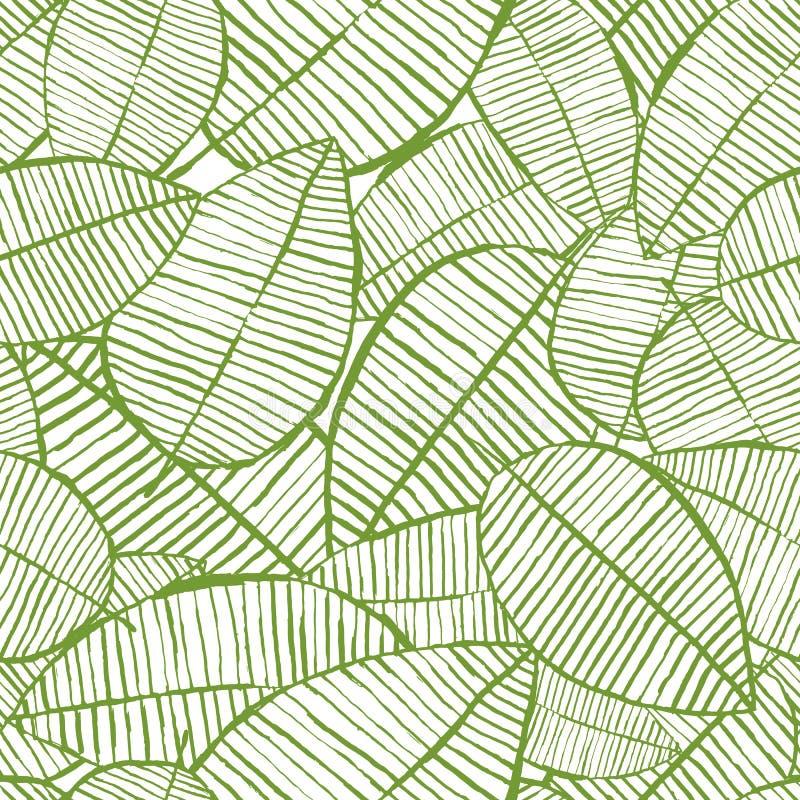 L'acquerello senza cuciture di vettore lascia il modello Fondo verde e bianco della molla Progettazione floreale per la stampa de illustrazione di stock