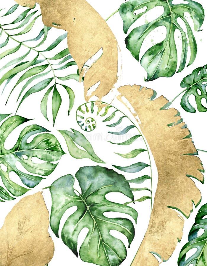 L'acquerello tropicale lascia l'insegna su fondo bianco Progettazioni floreali esotiche Illustrazione disegnata a mano royalty illustrazione gratis