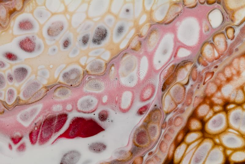 L'acrilico astratto versa la pittura con le cellule, arancia rosa-rosso bianca di Brown fotografia stock libera da diritti