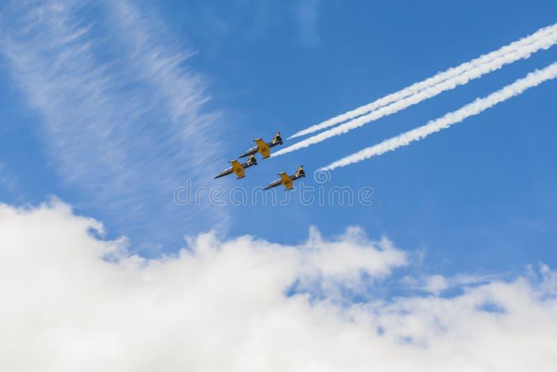 L'acrobazia acrobatica spiana RUS del ALCA aereo L-159 su aria durante l'avvenimento sportivo di aviazione dedicato all'ottantesi fotografia stock