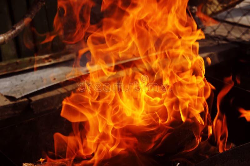L'addetto alla brasatura del fuoco sulle verdure della carne della frittura delle ossa della natura cucina fotografia stock libera da diritti