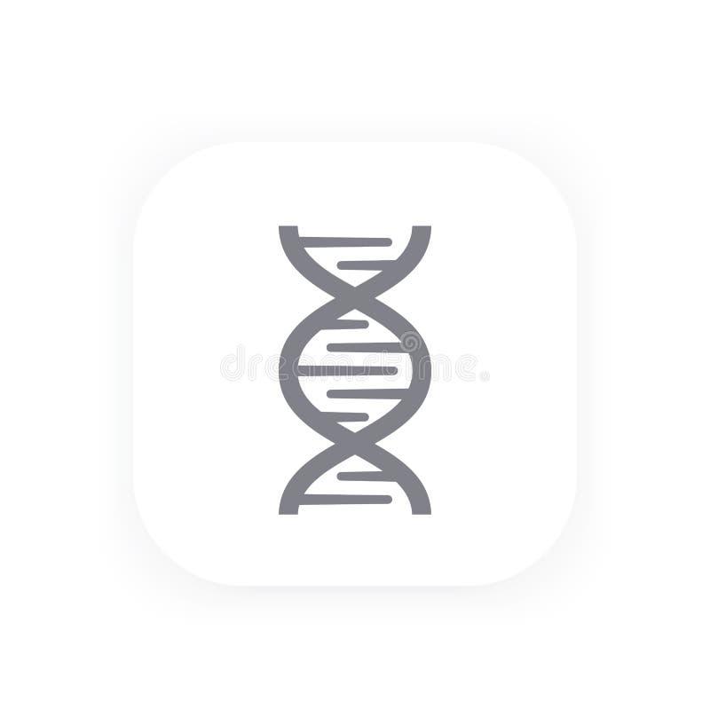 L'ADN enchaînent l'icône, la génétique, recherche de gène illustration stock