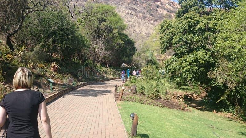 L'Afrique du Sud, Johannesburg images stock