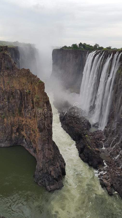 L'Afrique - Zimmie photo libre de droits