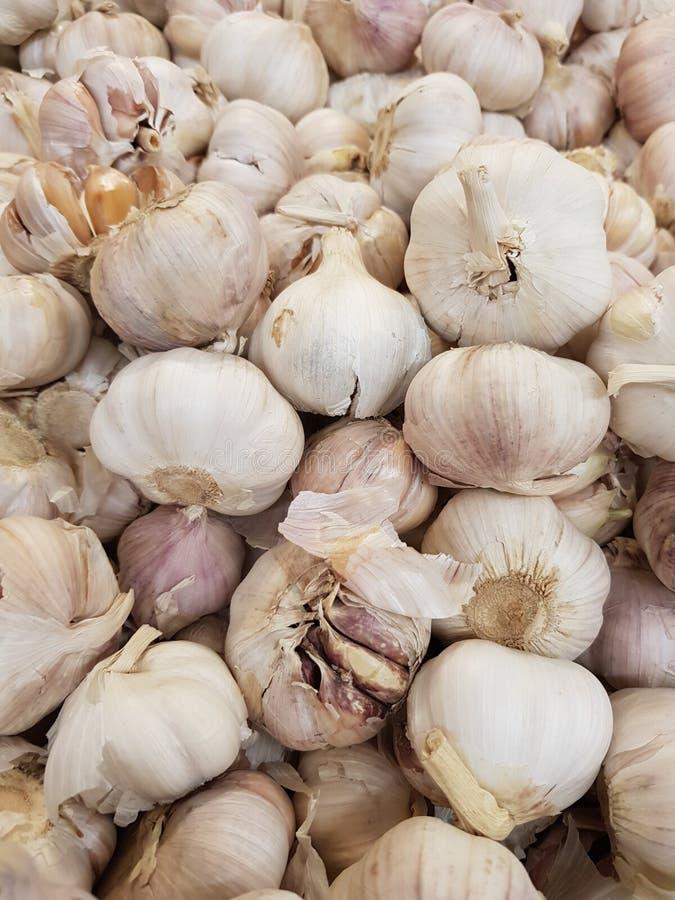 L'aglio organico fresco ha proprietà: Nutrendo la pelle per essere sano, contribuisca a rinforzare la crescita dei tessuti nel co fotografia stock