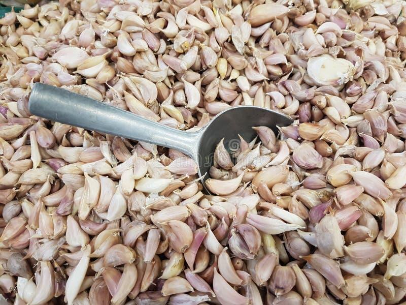 L'aglio organico fresco ha proprietà: Nutrendo la pelle per essere sano, contribuisca a rinforzare la crescita dei tessuti nel co immagini stock libere da diritti