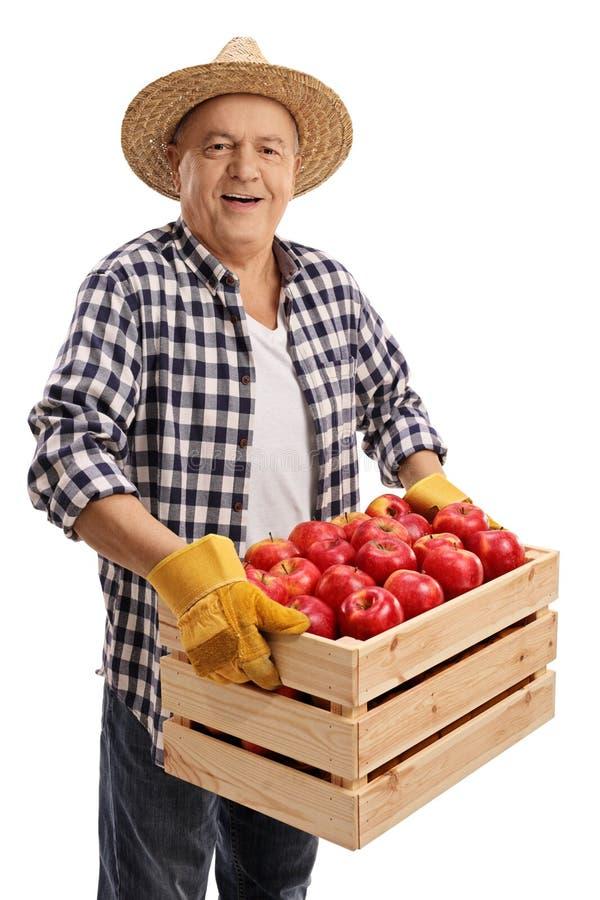 L'agricoltore anziano che tiene una cassa ha riempito di mele immagine stock