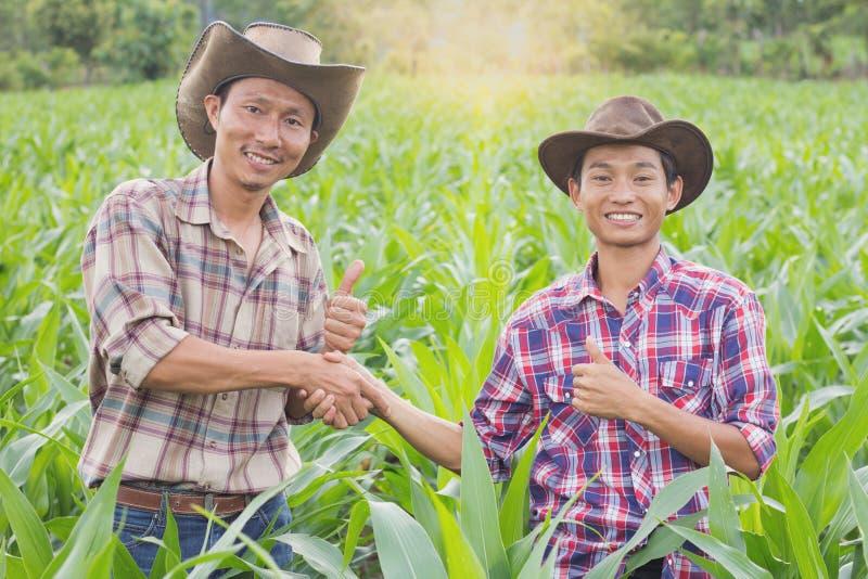 L'agricoltore due che sta e che stringe le mani al cereale coltiva, concetto o fotografie stock