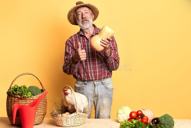 L'agricoltore maschio locale amichevole con la barba grigia, pollici di manifestazioni su, tiene la zucca immagine stock