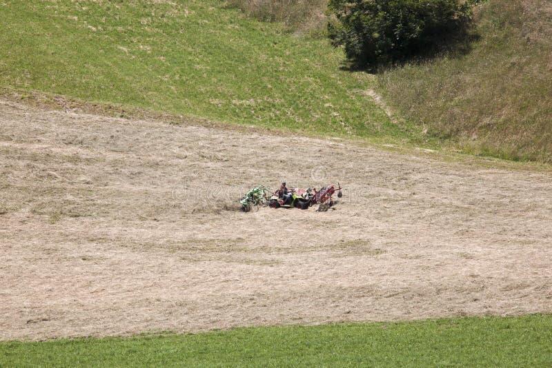 L'agricoltore sta girando il fieno in valle di Puster, Austria immagini stock libere da diritti