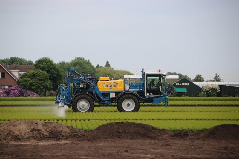 L'agricoltore sta spruzzando gli antiparassitari ed altri additivi crescenti sopra la terra in Zoeterwoude in de Paesi Bassi immagine stock libera da diritti