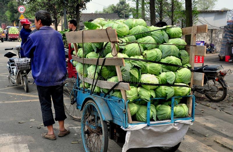 Pengzhou, Chine : Agriculteur avec le chargement de camion de choux images libres de droits