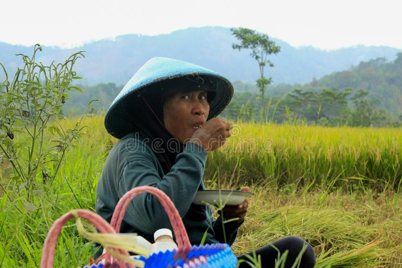 L'agriculteur féminin Indonesia photo stock