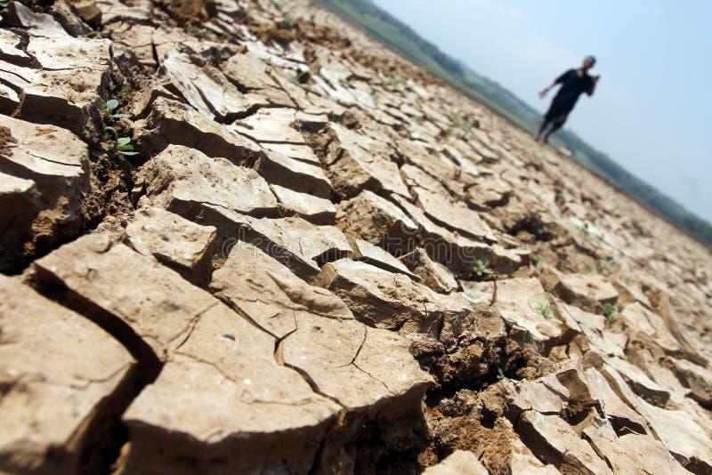 L'agriculteur marchant parmi le sol dessèche en raison d'un droug prolongé image libre de droits
