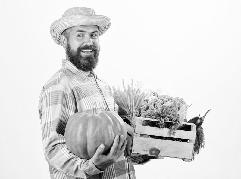 L'agriculteur portent des l?gumes de bo?te ou de r?colte de panier Excellents l?gumes de qualit? Concept d'?picerie Service de di photo stock
