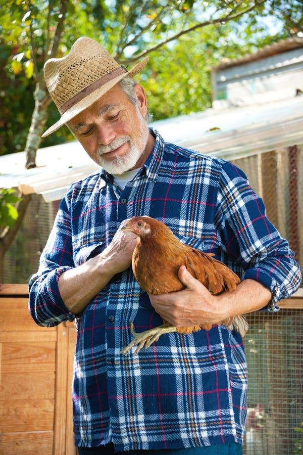 L'agriculteur tient le poulet dans des ses bras devant la maison de poule photographie stock libre de droits