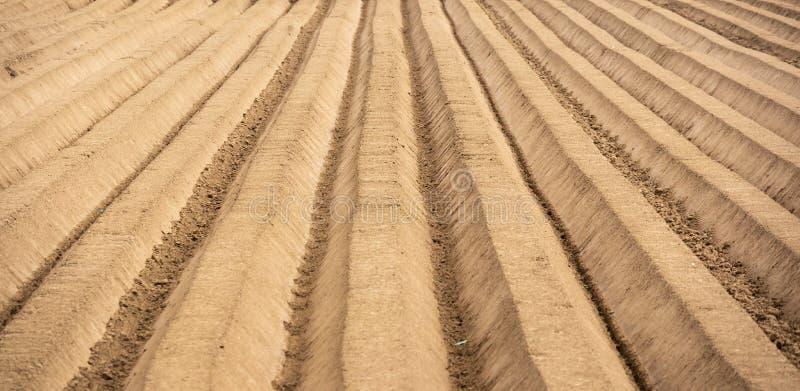L'agriculture a labour? la zone photographie stock libre de droits