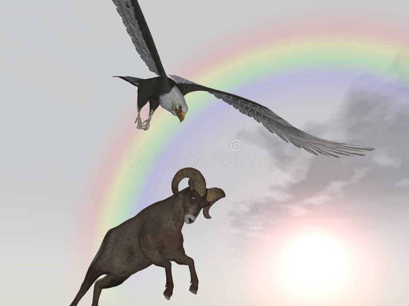 L'aigle de mer attaque des mouflons d'Amérique illustration libre de droits