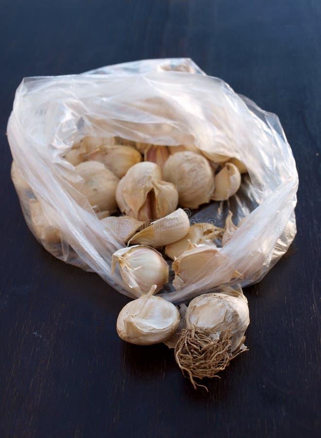 L'ail d'espèces d'allium est employé couramment pour sa saveur piquante image libre de droits