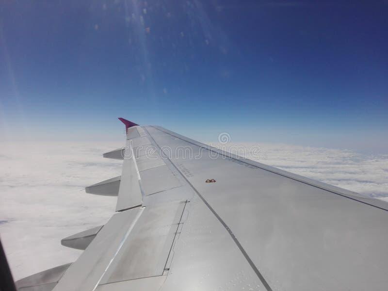 L'aile évidente de l'avion photo libre de droits